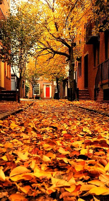 Animated Fall Wallpaper The Red Door Enchanted Autumn Fall Season Autumn
