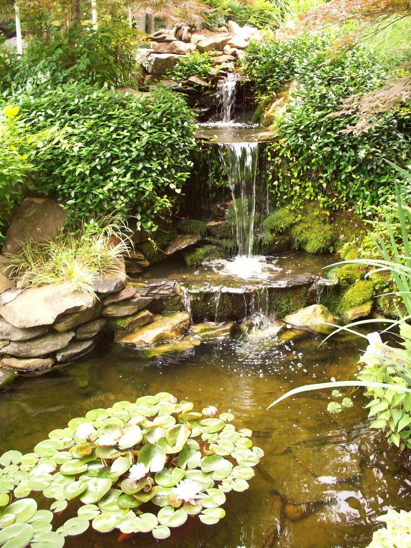 small waterfall pond landscaping for backyard decor ideas 79