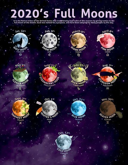 Poster 'Les pleines lunes de 2020' par Cammerel Dixon