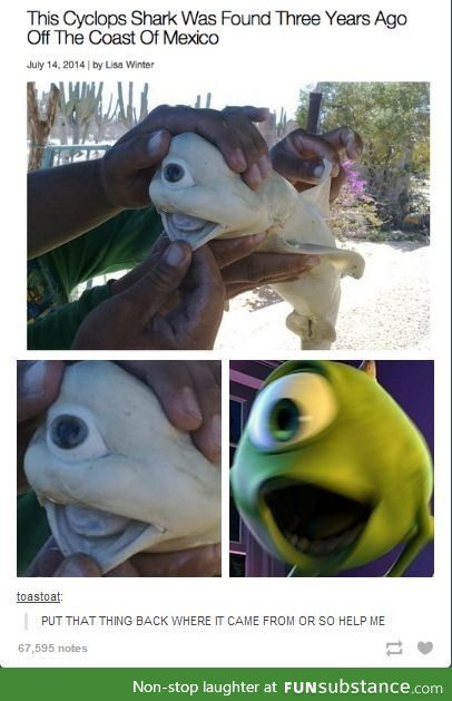 Found Mike From Monsters Inc Funsubstance Com Stupid Funny Memes Funny Memes Funny