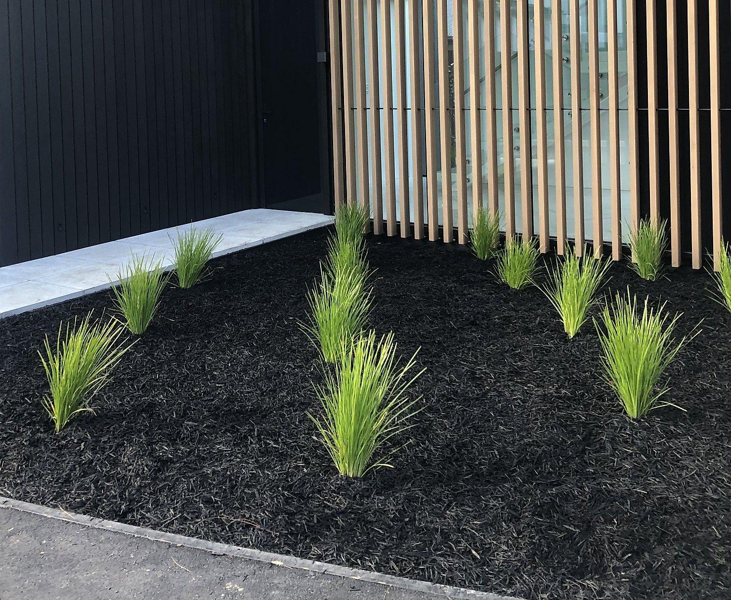 Pin on Garden & Plants