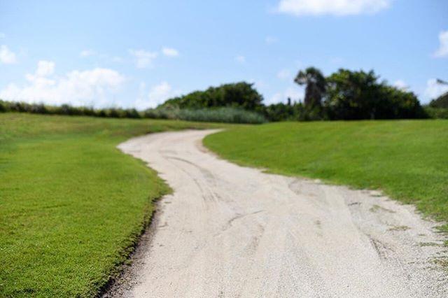 """morning rush hour #golf #golferslife"" by (alfrescopb). explore #visitfl #sltravels #mytinyatlas #letsgosomewhere #golf #palmbeachisland #howiflo #shareyourparadise #paradise #abmtravelbug #flociety #beachlife #floridalife #tlpicks #golferslife #florida #coastalliving #roamflorida #pureflorida #bythesea #sunshinestate #ilovefl #travelgram #floridalocal #lovefl #hashtagflorida #thepalmbeaches #wanderlust. [Follow us on Twitter at www.twitter.com/MICEFXsolutions for more...]"