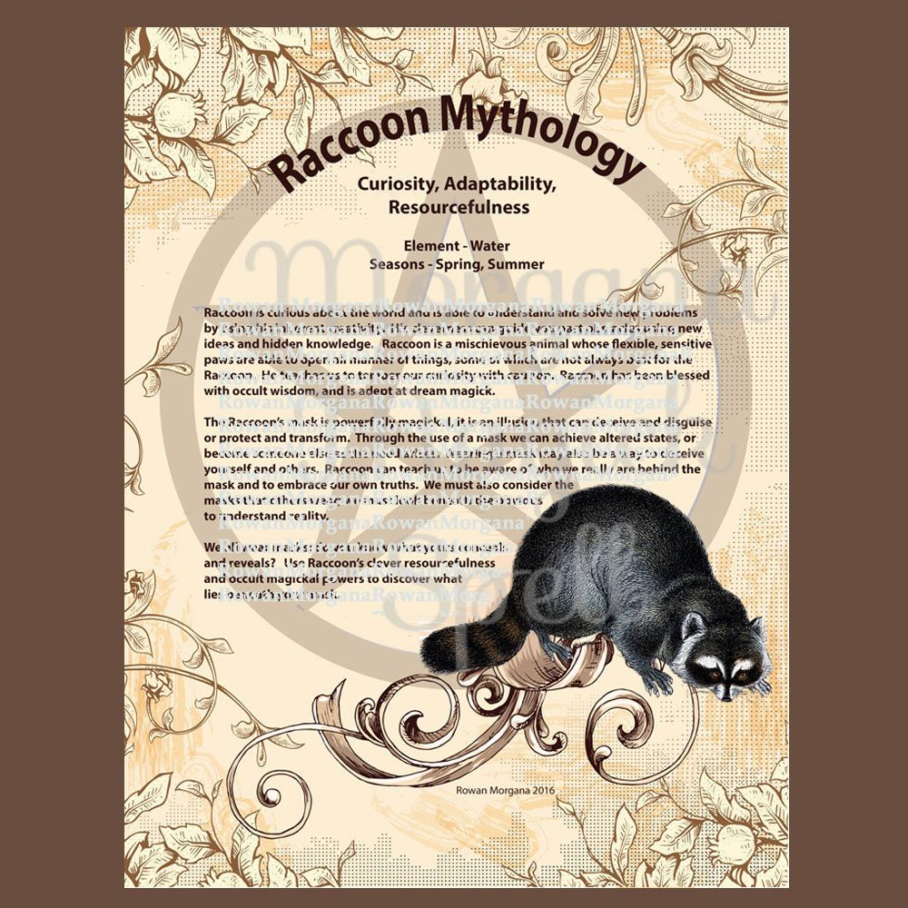 RACCOON MYTHS And CORRESPONDENCES Printable Book Of