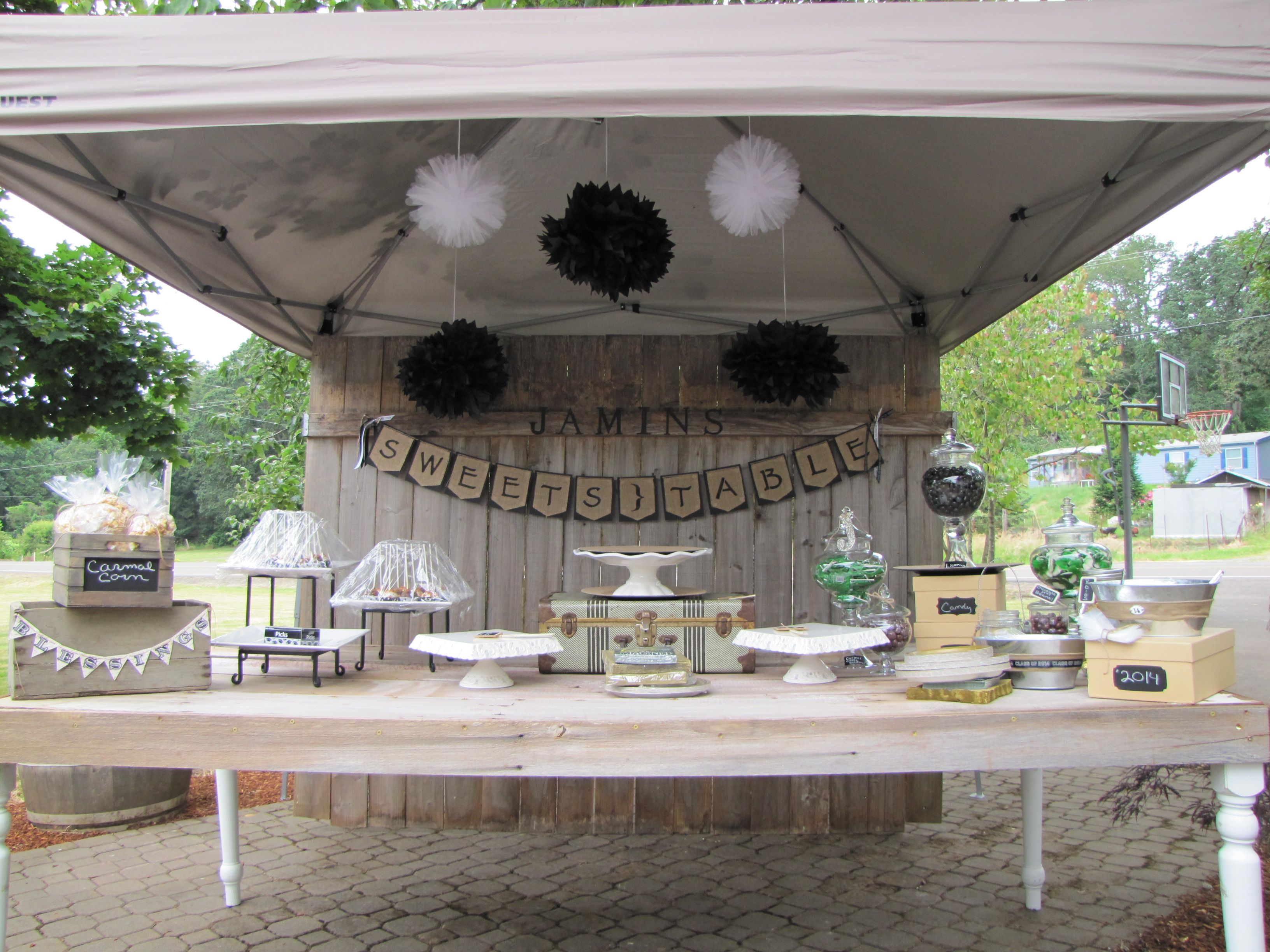 Rustic graduation parties like image