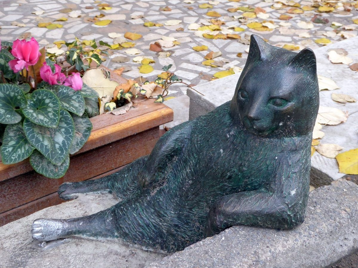 Tombili Pet day, Cats, Cat statue