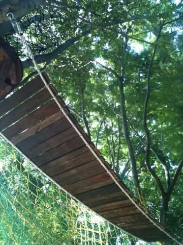 A Wooden Bridge to take you from one side of the forest to another