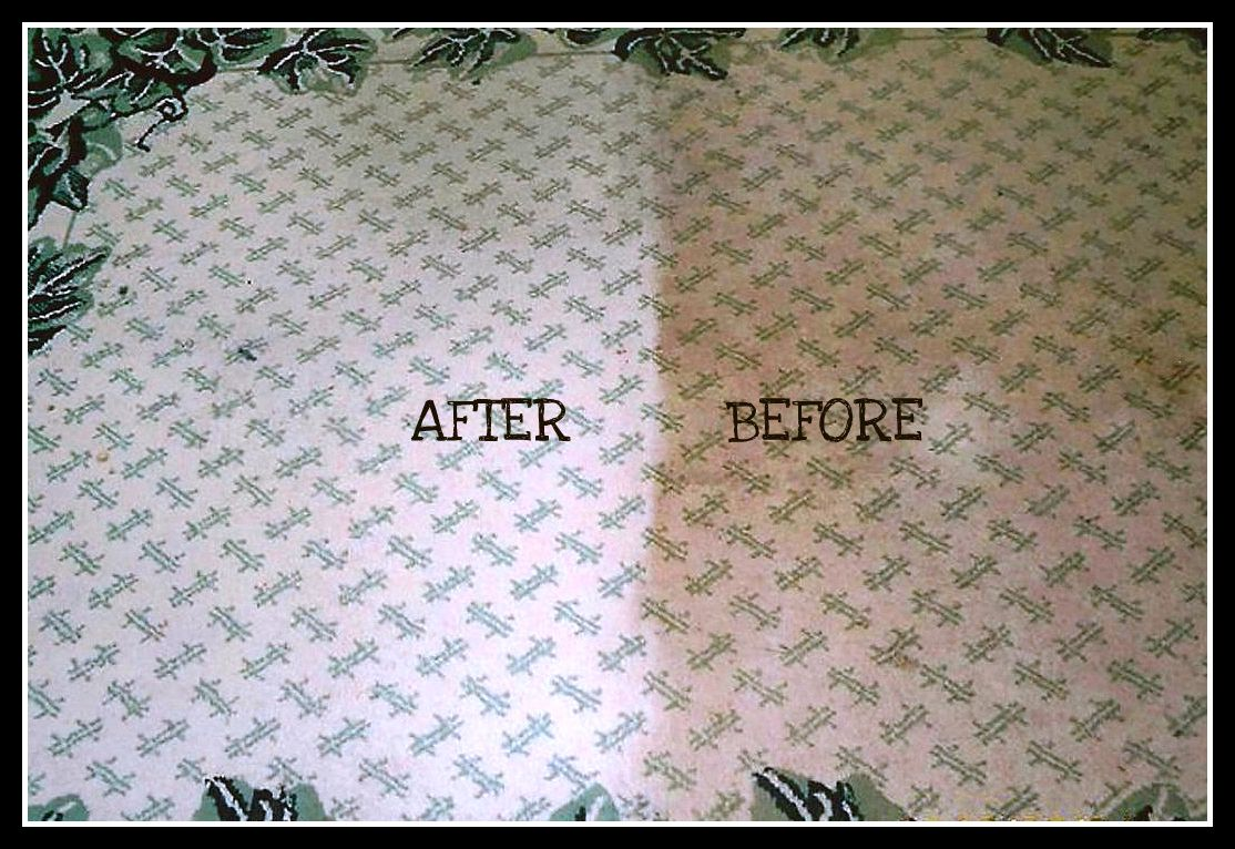 Home Improvement Professional Carpet Cleaning Carpet Flooring Cleaning