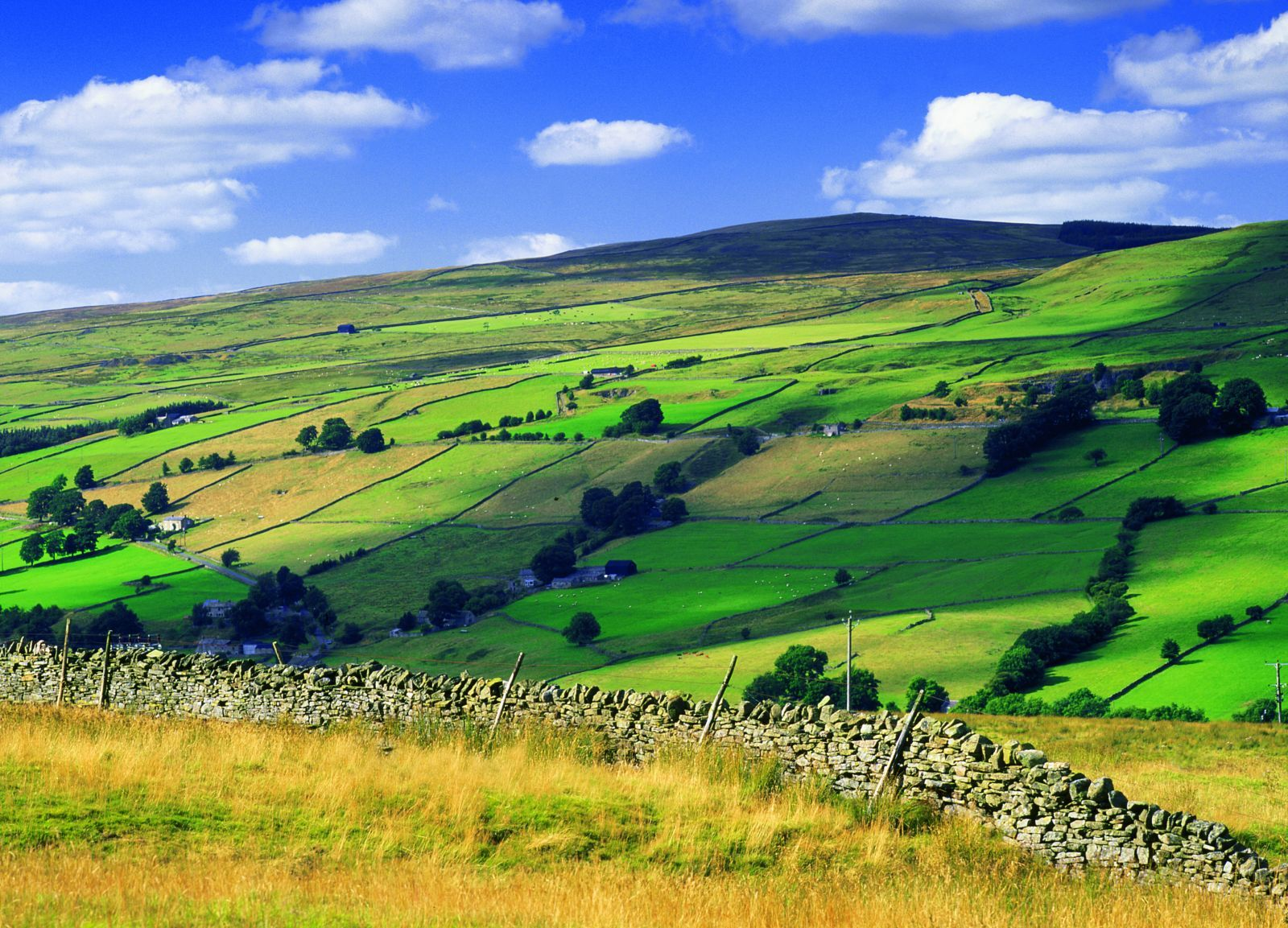 Living Landscapes Northumberland Wildlife Trust Landscape England And Scotland Northumberland England