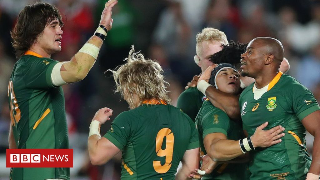 South Africa Celebrates World Cup Win Over England World Cup England Fans Rugby World Cup