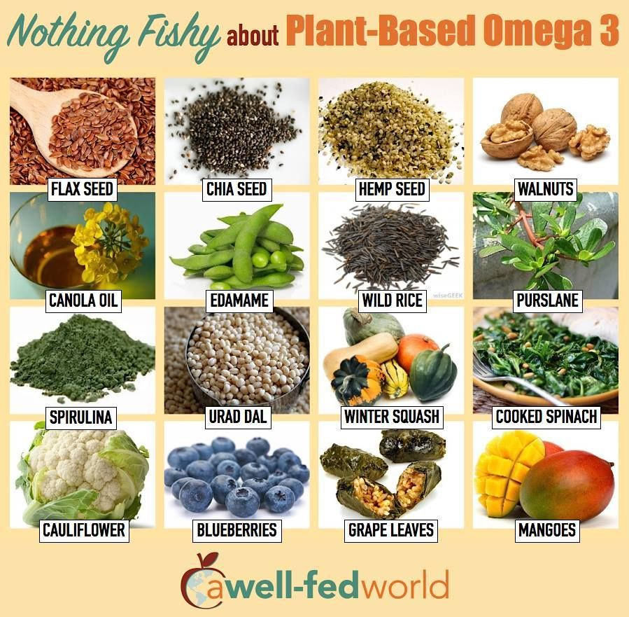 Omega 3 Fatty Acids Are Important In The Normal Functioning Of All Tissues Of The Body But They Are Best Obtained Vegan Nutrition Nutrition Vegetarian Diet