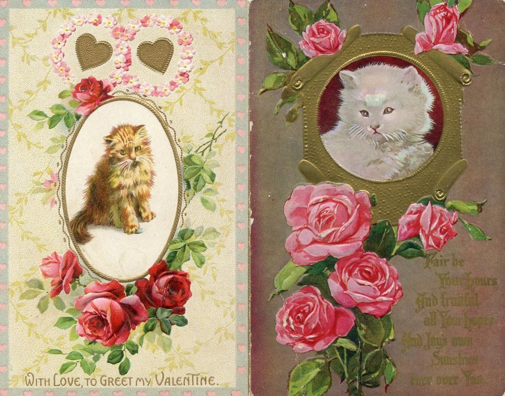 2 vintage 1910's embossed greeting postcards, Both with Cats & Roses, etc.