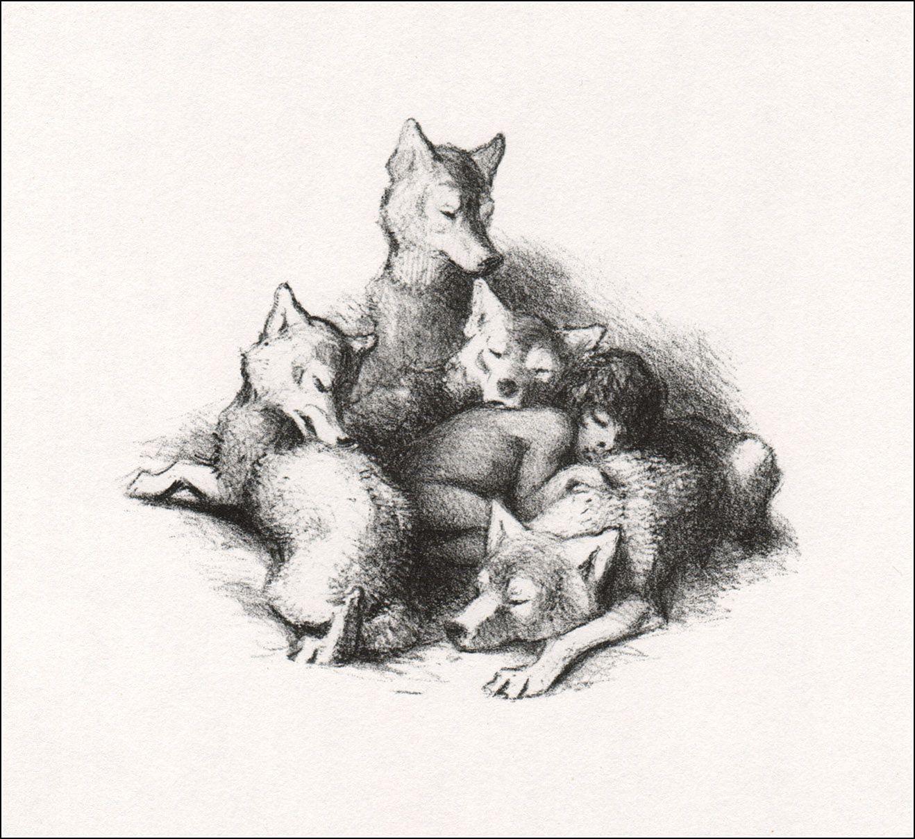 Mowgli. ISBN 9785392016280; 2011. Illustrator Vasily
