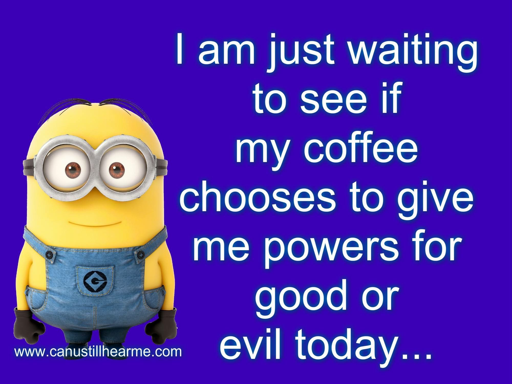 Newyorkgourmetcoffee Com Coffee Decaf Caffeine Newyork Shoplocal Special Drink Warm Iced Gou Fun Quotes Funny Funny Minion Quotes Super Funny Quotes
