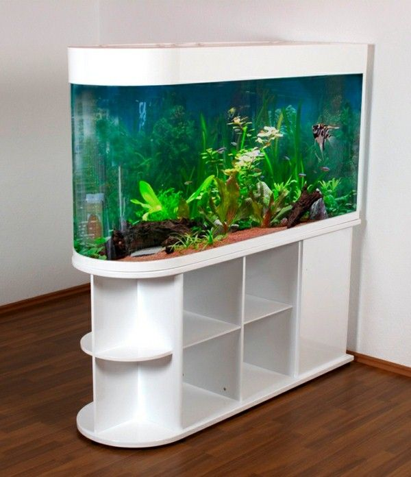 Aquarium Room Dividers White Color Seem Modern Aquarium