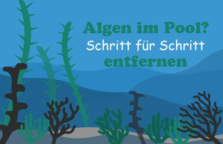 Algen Im Pool Richtig Entfernen Schritt Fur Schritt Anleitung Algen Im Pool Nur Algizid Und Chlor Hinzugeben Reicht Nicht Lerne Algen Im Pool Pool Algen