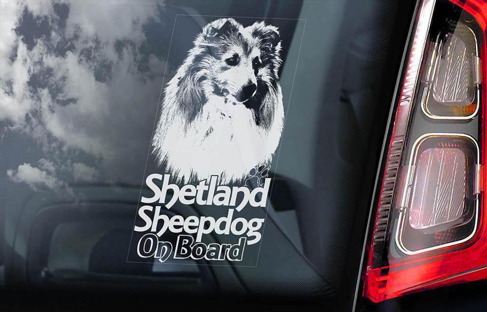 Car Window Sticker V20 Belgian Malinois on Board Mechelse Dog Sign Decal