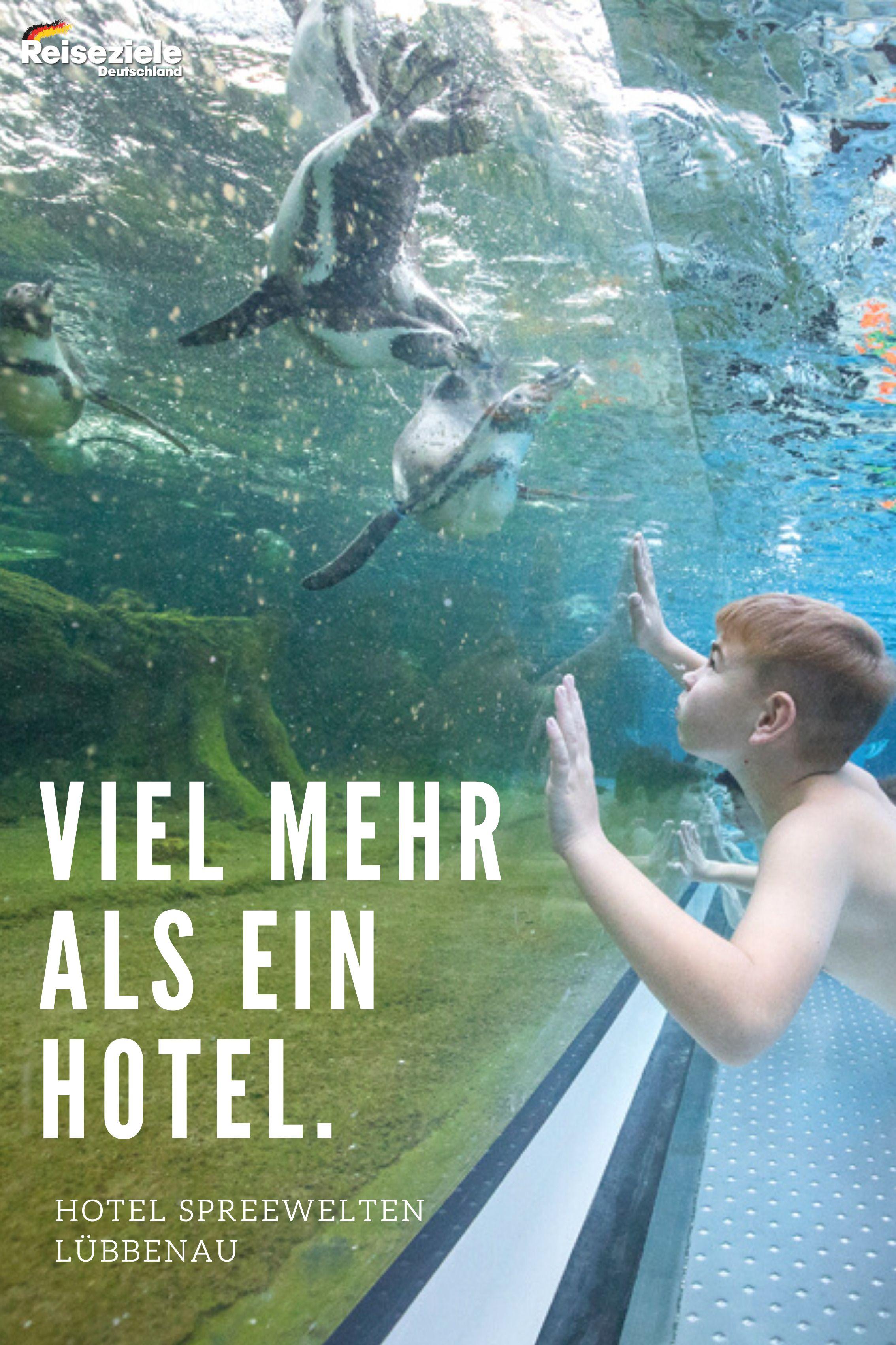 Spreewelten Hotel Lubbenau Schlafen Bei Den Pinguinen Urlaub Bayern Hotel Ausflug