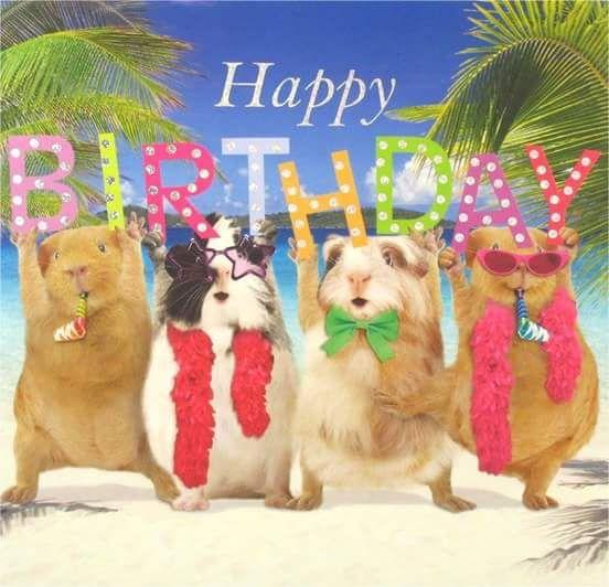 Pin by l v on happy birthday pinterest geburtstag and geburt - Geburtstagsideen zum 90 ...