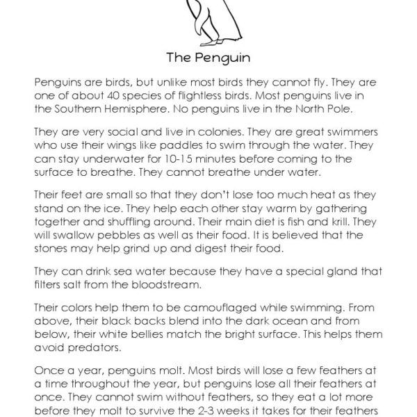 Short Story - The Penguin | Reading | Reading passages