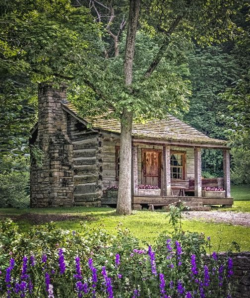 One Room Log Cabin From The   Cabin Living