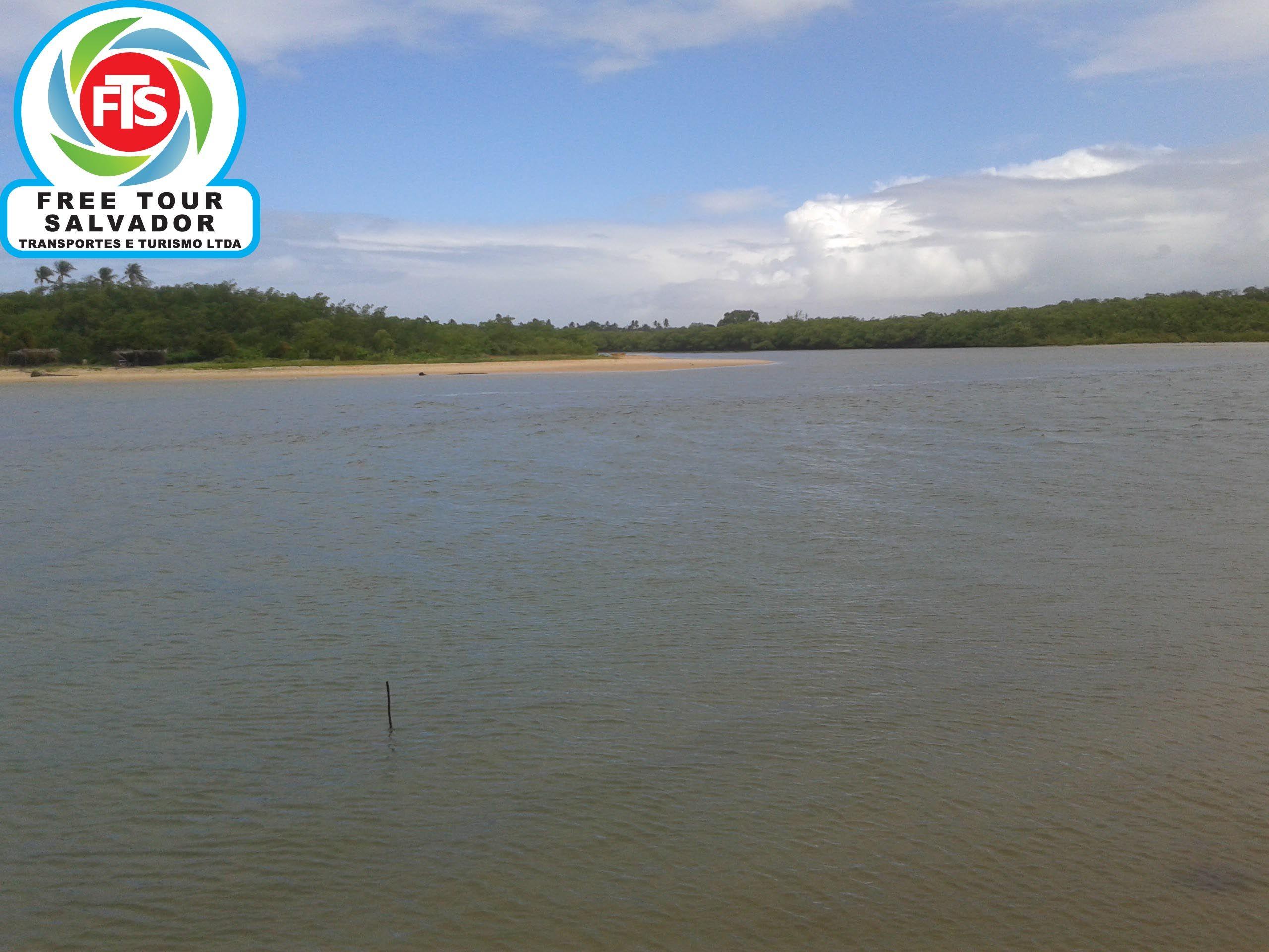 Passeio A Praia Do Forte Barra Do Jacuipe Https Www