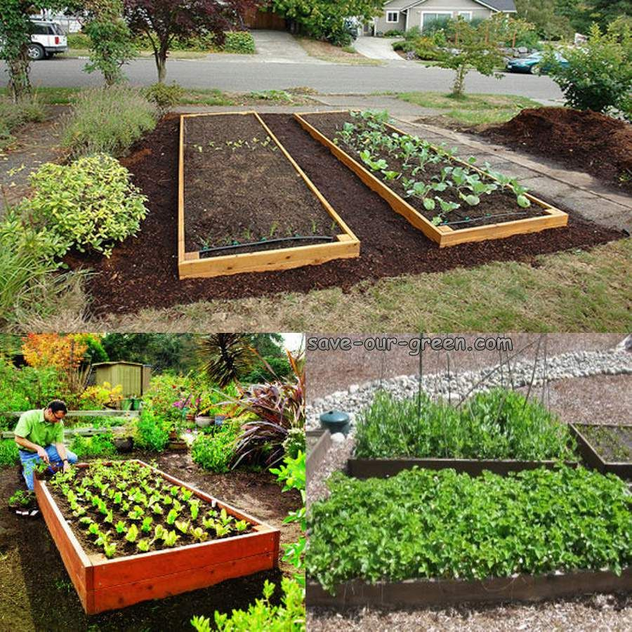 Small Garden Secrets: Save Our Green » Garden Bed: What And How?