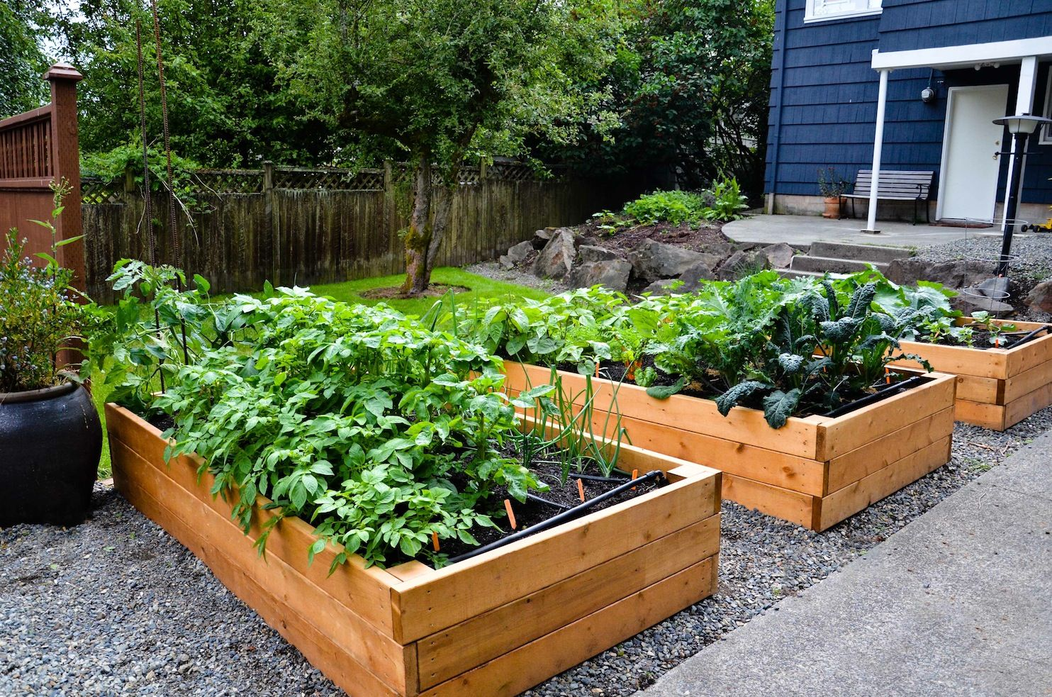 To Get More Detailed Information About This Incredible Lofty Vegetable  Planter Box In Backyard Garden Ideas · Raised Garden Bed DesignRaised ...