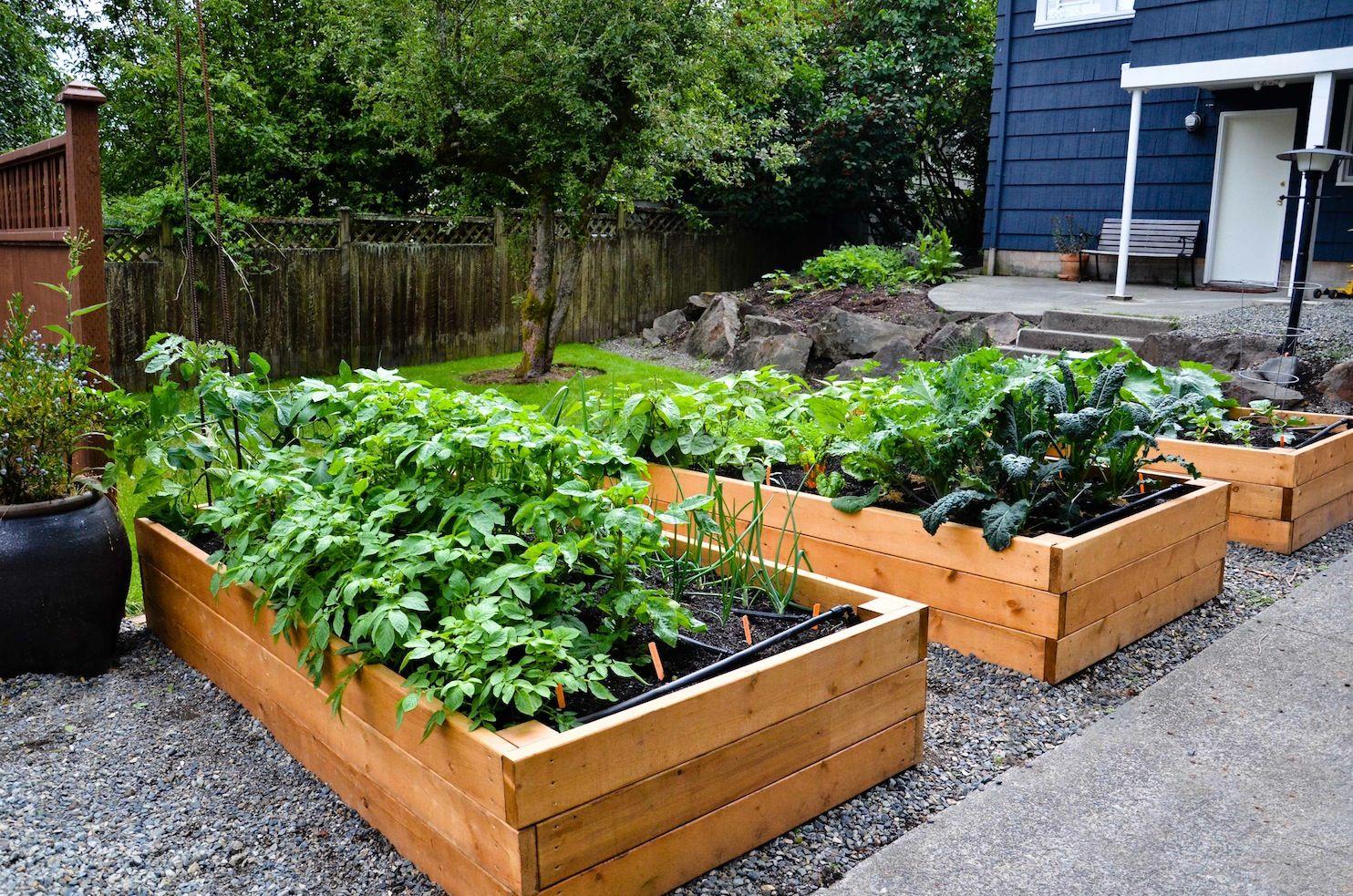 RaisedBed Ideas for Plantation