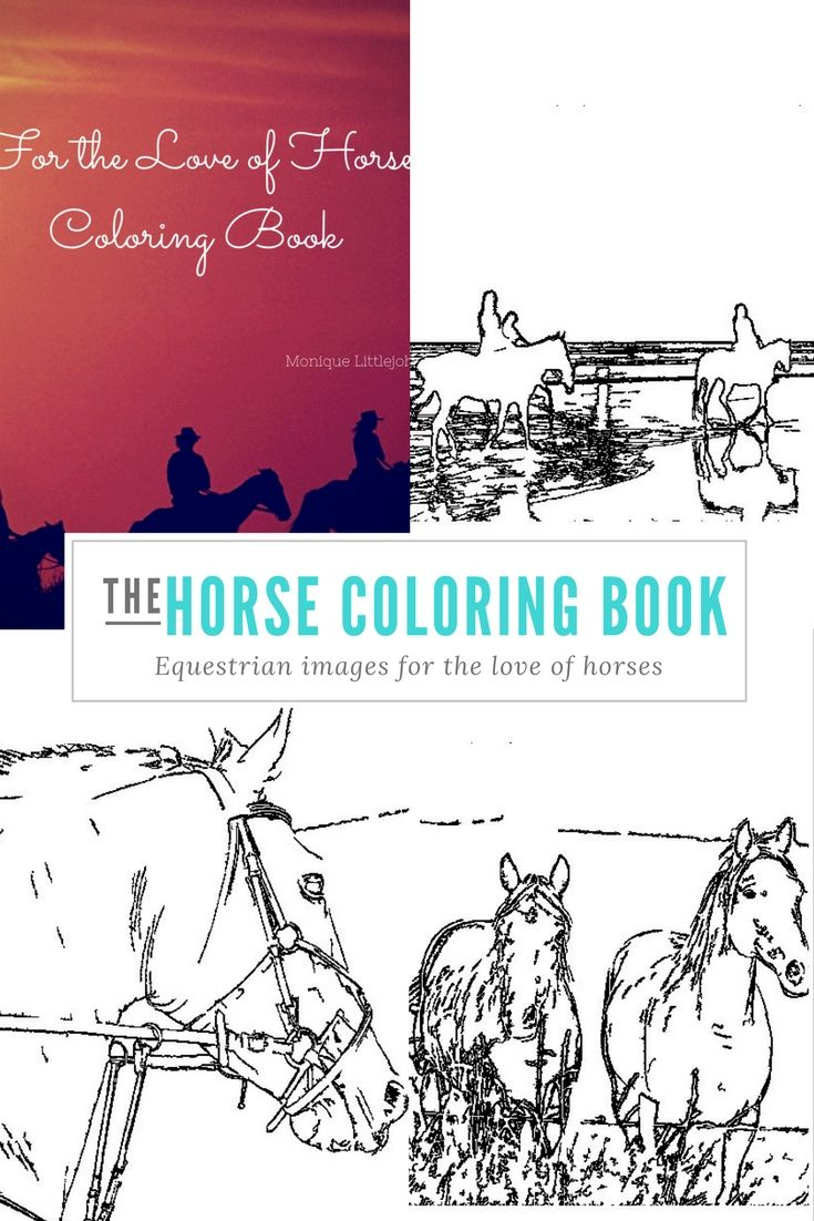 Horse Coloring Book That Includes Western Eastern Parades Hunter Jumpers And Dressage Https Www Createsp Horse Coloring Books Coloring Books Horse Books [ 1102 x 735 Pixel ]