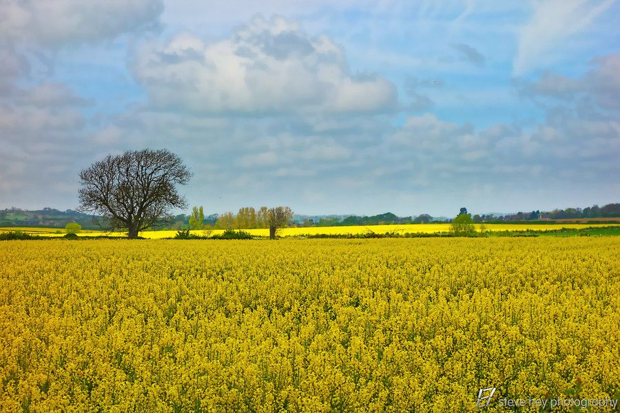 England's Green and Pleasant Land - 3 by Steve Hey on 500px