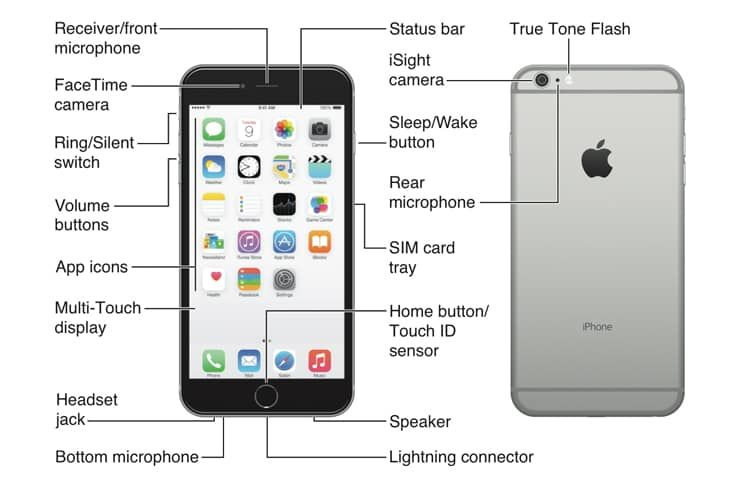 Image Result For Iphone 6 Buttons Diagram Iphone Iphone 6 Multi Touch