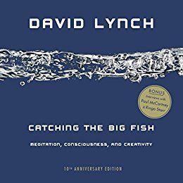 Catching the Big Fish: Meditation, Consciousness, and Creativity: 10th Anniversary Edition par [Lynch, David]