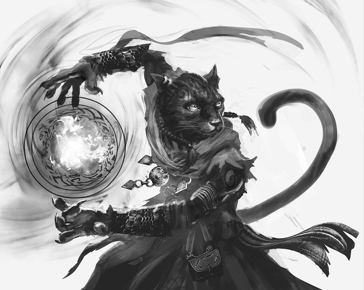 Image result for tabaxi wizard