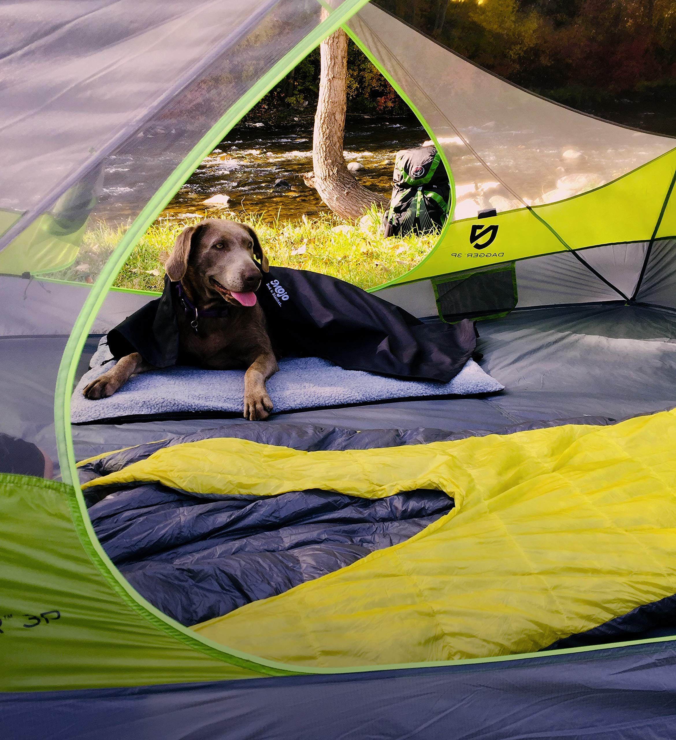 Mojo Portable Inflatable Dog Travel Bed Great For Camping Backpacking Hiking Car Seat For All Outdoor Dog Activitie Dog Travel Bed Outdoor Dog Dog Travel