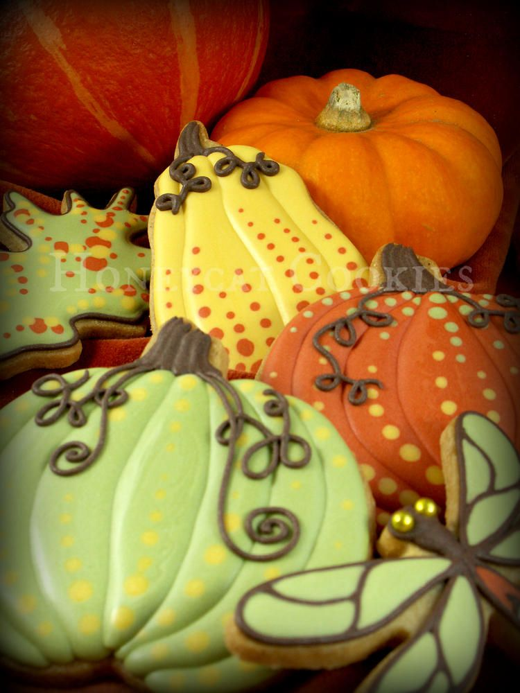 Pumpkins and gourds Cookie Connection Don\u0027t let the cookie - halloween pumpkin cookies decorating