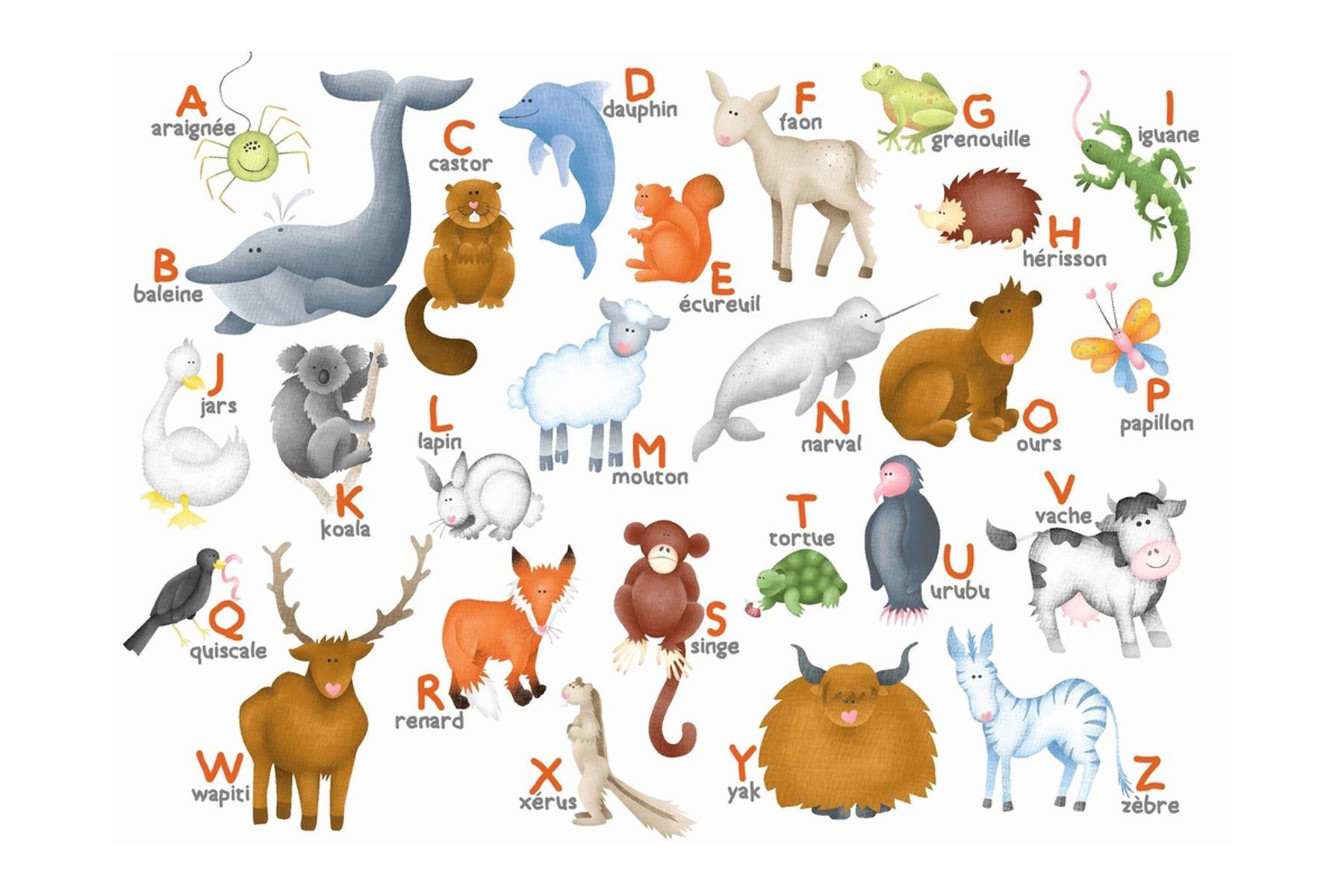puzzle en bois l alphabet des animaux puzzle 12 pi ces. Black Bedroom Furniture Sets. Home Design Ideas