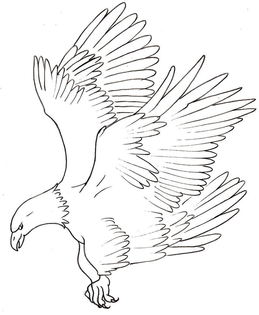 Asian Dragon Tattoo Sketch By Marinaalex On Deviantart: Eagle Tattoo 4 By ~Metacharis On DeviantART