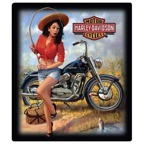 Harley Davidson Nice Catch Babe Sign