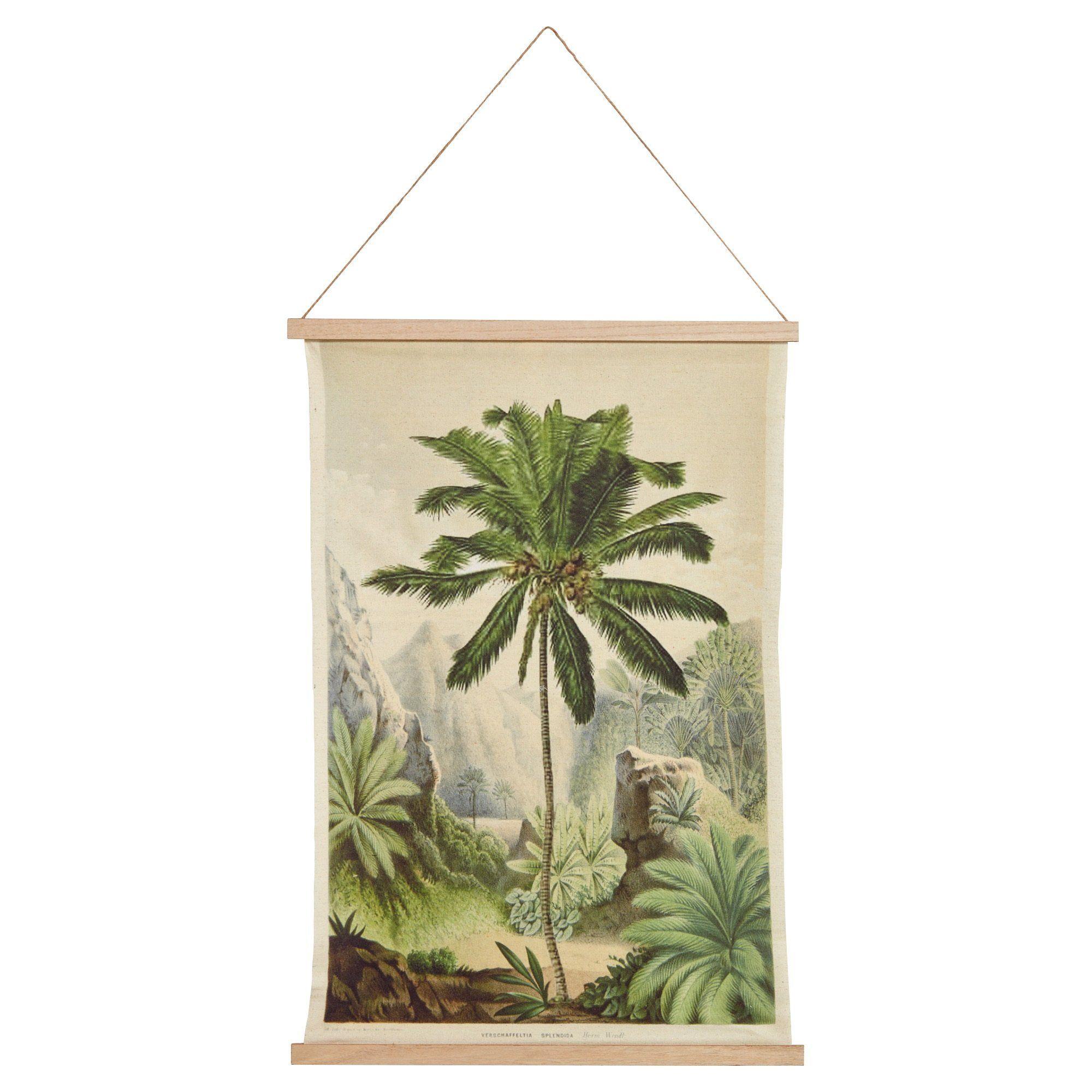 Canvas Palm kopen? Bestel online of kom naar één van onze
