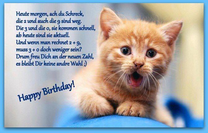 Geburtstag Katzenfreund