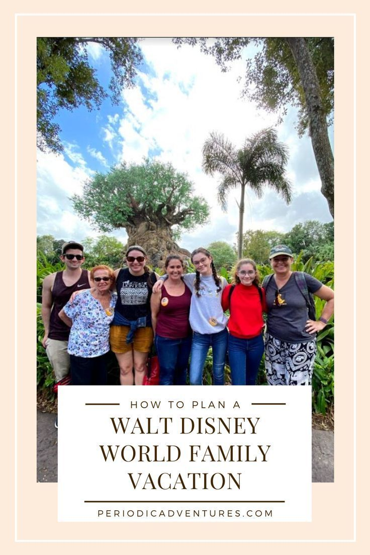 How to Plan a Trip to Disney World for Adult Families – Periodic Adventures