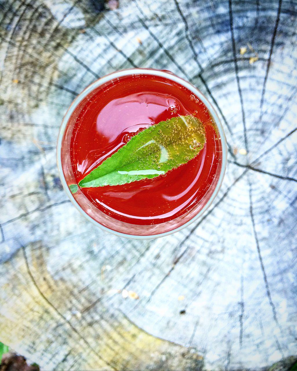 Easy Rhubarb Infused Vodka Recipe And A Refreshing Rhubarb