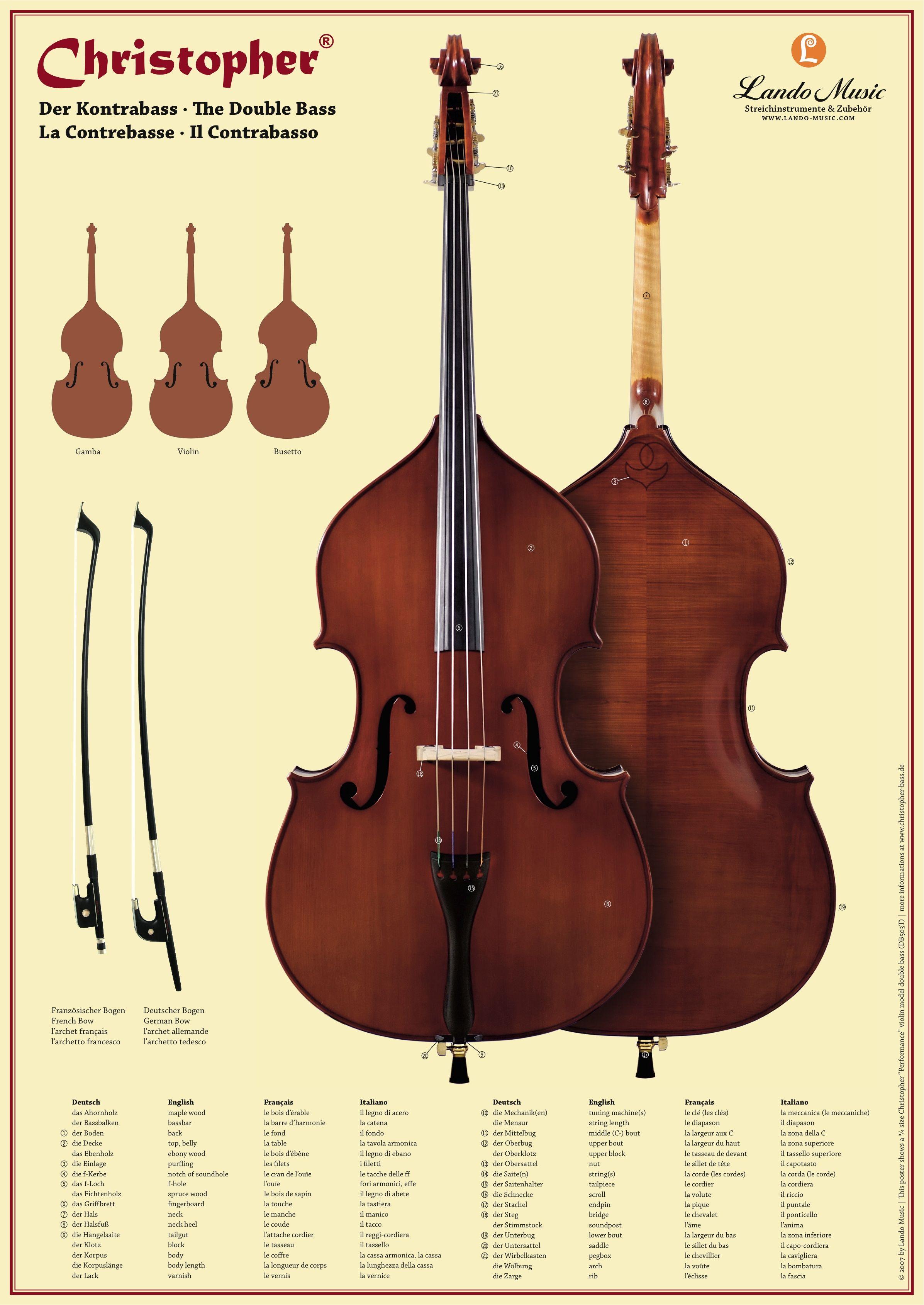 Pin By Aditya Maulana On Biola Double Bass Bass Violin