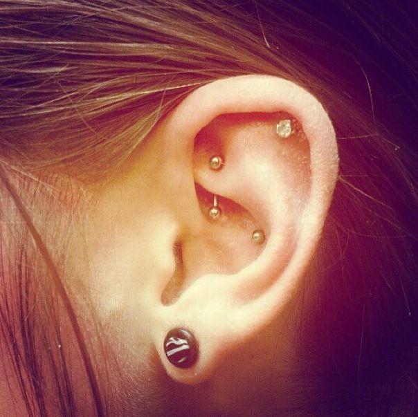 #rook #cartilage #conch #gauges | Cool piercings ...