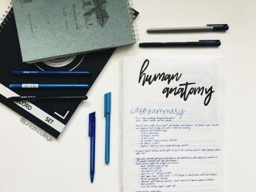 Pin by zeeshreddz on Study Tips   Pinterest   Human anatomy, Summer ...