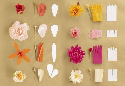 Bilden Sie alle diese Blumen mit Krepppapier. :Ö]Blumen basteln | Blumen ...