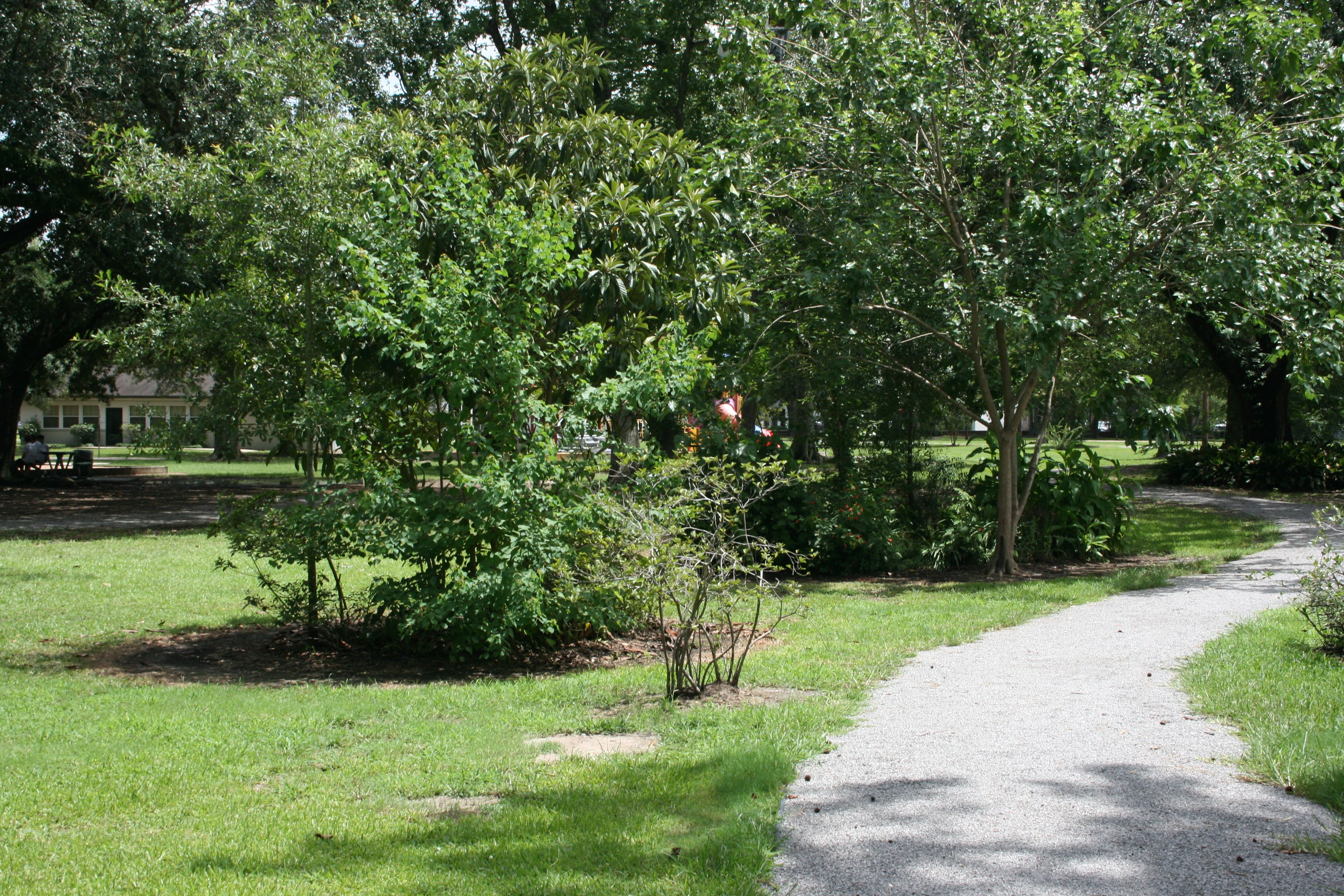 Drew Park 416 S Ryan St Lake Charles La Play Gyms Swings A Walking Trail Picnic Tables And Oak Trees Summer Day Camp Parks And Recreation Lake Charles La