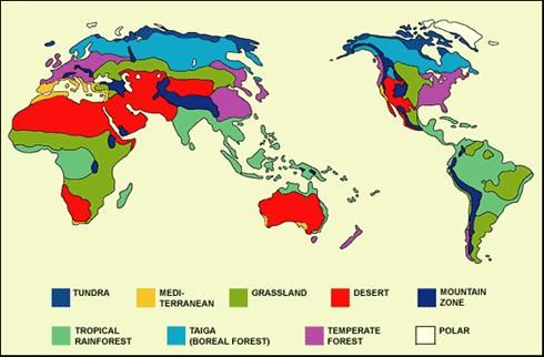 Biomes map ac geography biomes food security yr9 pinterest map of biomes of the world gumiabroncs Gallery
