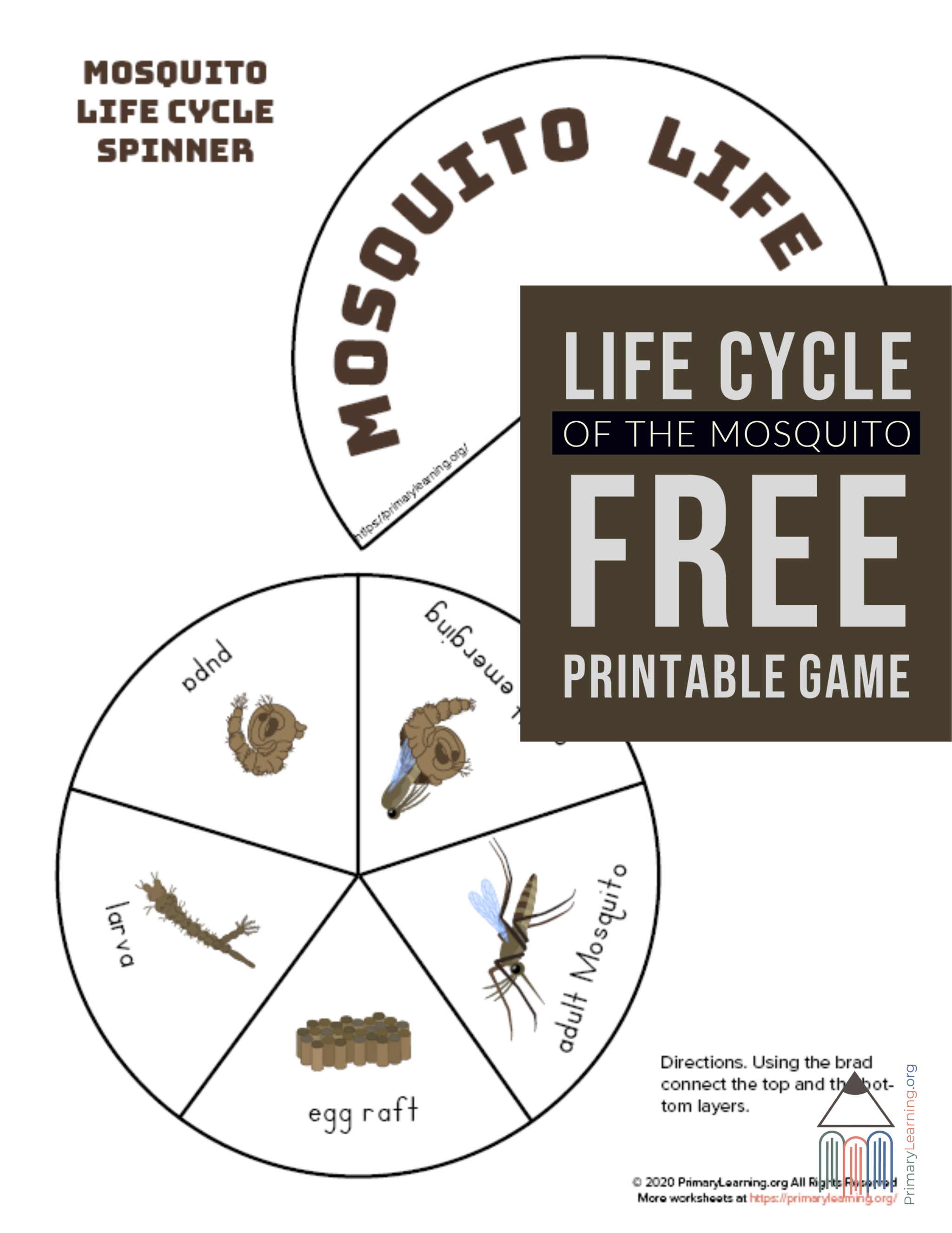 Students Will Love Creating A Life Cycle Spinner Wheel And