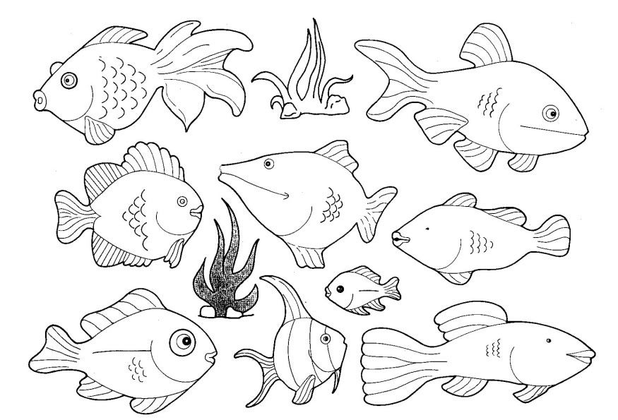 Coloring Pages With Sea Creatures Coloring Pages For Kids Fish Coloring Page Animal Coloring Pages Geometric Coloring Pages